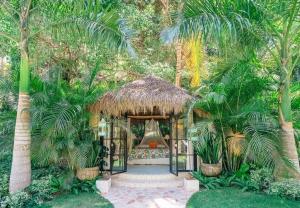 amor-boutique-hotel-angelito-jungle-one-bedroom-luxury-hotel