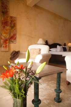 amor-boutique-hotel-hotelito-architectural-detail