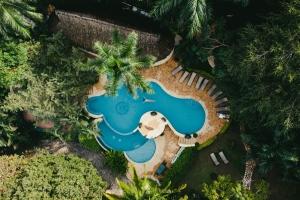 amor-boutique-hotel-in-sayulita-resort-pool-drone-photo